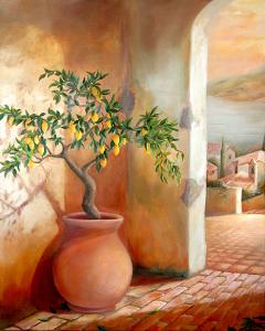 Tuscan Lemon Tree SOLD